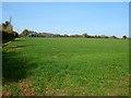 SU4640 : Farmland, Wonston by Andrew Smith
