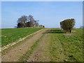 SU4740 : Farmland, Wonston by Andrew Smith