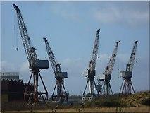 NS5566 : Cranes at Govan by kim traynor