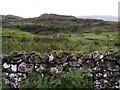 NG4944 : Walled Pasture in Toravaig by Hilmar Ilgenfritz