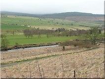 NU0401 : Footbridge over the River Coquet by Russel Wills