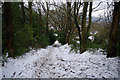 SE0025 : Footpath from Daisy bank towards Nest Lane, Mytholmroyd by Phil Champion