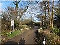 SX0365 : The bridge at Hooper's Bridge by David Smith