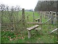 SE4430 : Double stile over fenced hedge by Christine Johnstone