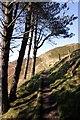 SJ1367 : Offa's Dyke Path approaching Penycloddiau by Jeff Buck