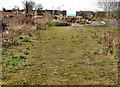 J4272 : Vacant ground, Dundonald by Albert Bridge
