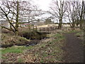 NZ1853 : Footbridge in Tanfield Woods by Robert Graham