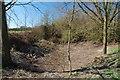 TQ8893 : Dry Pond by John Myers