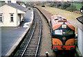 S7915 : Beet train, Ballycullane by Albert Bridge