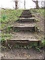 NZ3067 : Steps from Wallsend Dene by Christine Westerback