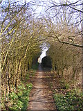 TM3876 : Swan Lane footpath to Blyth Road by Adrian Cable