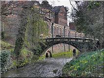 SJ8383 : Quarry Bank Mill, Stone Footbridge by David Dixon