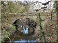 SJ8182 : River Bollin, Oversleyford Bridge by David Dixon