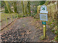 SJ8383 : Path Into The Styal Estate by David Dixon
