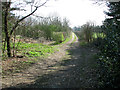 TG3821 : Footpath west of All Saints church, Catfield by Evelyn Simak