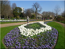 TQ2879 : Floral display in The Rose Garden, Hyde Park by Marathon