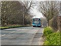 SJ5993 : Newton Road (A49) by David Dixon