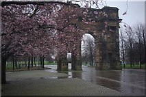 NS5964 : Glasgow Green by Stephen McKay