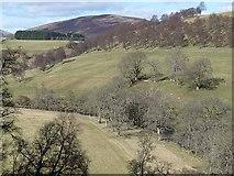 NO3462 : Glen Prosen above Dodavoe by Oliver Dixon