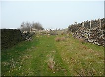SE0021 : Hebden Royd Bridleway 126 where it crosses Bridleway 123 by Humphrey Bolton