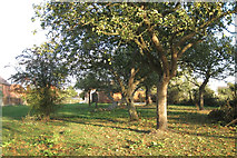 SP4476 : Remnant orchard southwest side of Church Lawford by Robin Stott