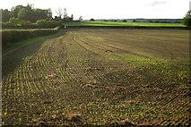 SP4476 : Fields west of Church Lawford by Robin Stott