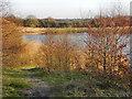 SD6100 : Large Lake, Abram Flashes by David Dixon