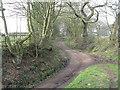 SJ6083 : Delamere Way by Dennow Wood by M J Richardson
