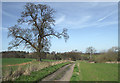 SO7988 : Farm track north of Six Ashes, Staffordshire by Roger  Kidd