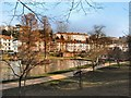 TQ8110 : Pond in Alexandra park by Paul Gillett