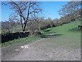 SE1426 : Footpath - Rookes Lane by Betty Longbottom