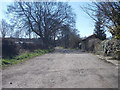 SE1426 : Track - Whitehall Road by Betty Longbottom