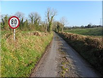 H2218 : Road at Killywaum by Kenneth  Allen