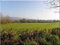 H2117 : Kildoagh Townland by Kenneth  Allen