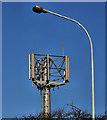 J4481 : Telecoms mast near Bangor by Albert Bridge
