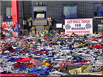 SD6409 : Fans' Get-Well Messages for Fabrice Muamba by David Dixon