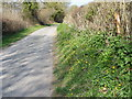 SU0725 : Mill Lane, Bishopstone by Maigheach-gheal