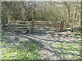 TQ1937 : Stile and gate at entrance to Horsegills Wood by Dave Spicer