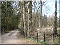 NJ6431 : The driveway to Williamston House from Devil's Folly road. by Stanley Howe