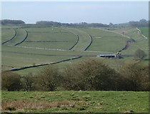 SK1678 : Field pattern near Little Hucklow by Andrew Hill