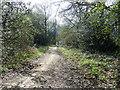 TL0717 : Half Moon Lane (Track) by Rob Farrow