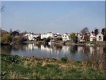 TQ1673 : View across the Thames to Twickenham by Paul Gillett
