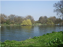TQ1773 : River Thames at Orleans by Paul Gillett