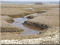 SU7600 : Saltmarsh Channel, Pilsey by Colin Smith
