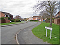 SJ8463 : Chestnut Drive, West Heath by Richard Dorrell