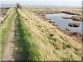 SU7603 : Sea Wall at Stanbury Point by Colin Smith