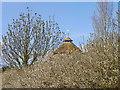 SU0725 : Early spring blossom, Bishopstone by Maigheach-gheal