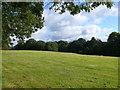 ST6037 : Recently Mown Field by Nigel Mykura