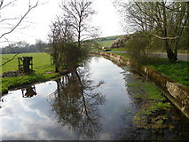 SU0425 : River Ebble, Broad Chalke - 32 by Maigheach-gheal