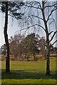 TQ2354 : Walton Heath Golf Course by Ian Capper